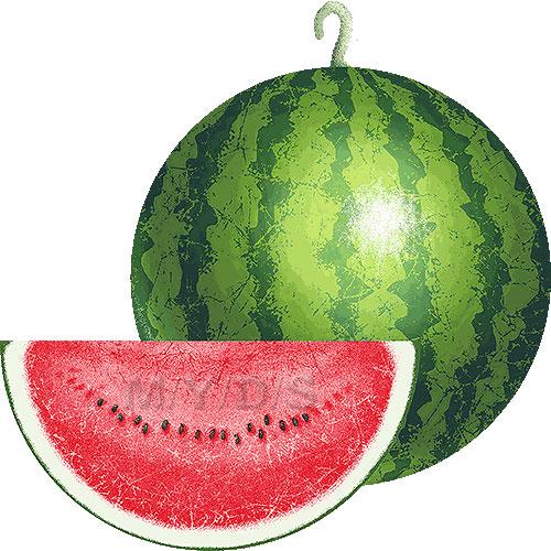 500x500 Watermelon clipart free clip art image 1