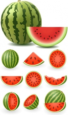 217x368 Watermelon free vector download (124 Free vector) for commercial