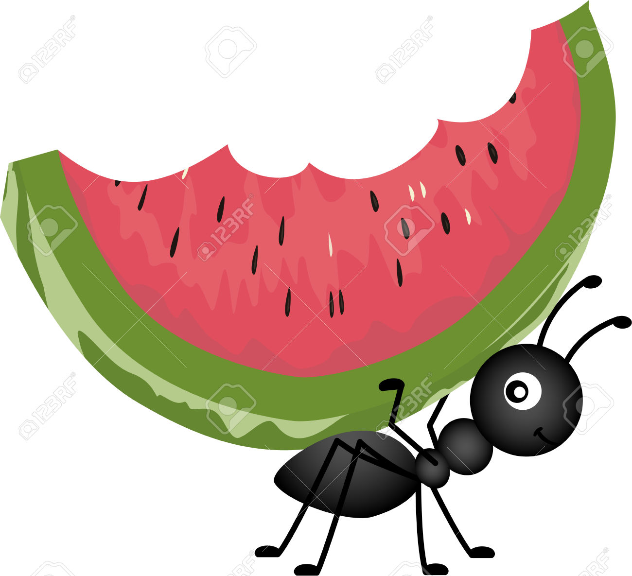 1300x1185 Watermelon clipart bitten