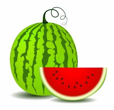 382x368 watermelon clip art
