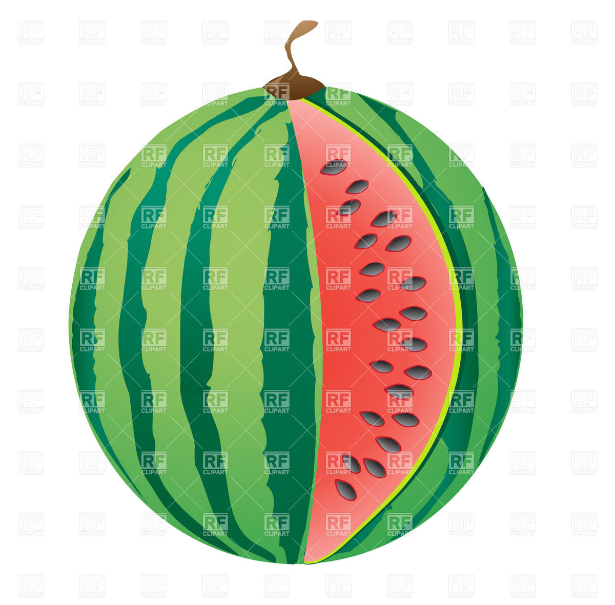 1200x1181 Ripe big watermelon with missing slice Royalty Free Vector Clip