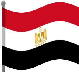 263x242 Egypt Flag Waving