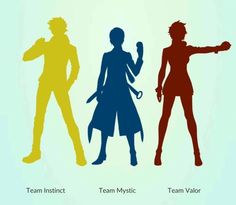 790x687 How To Choose The Right Team