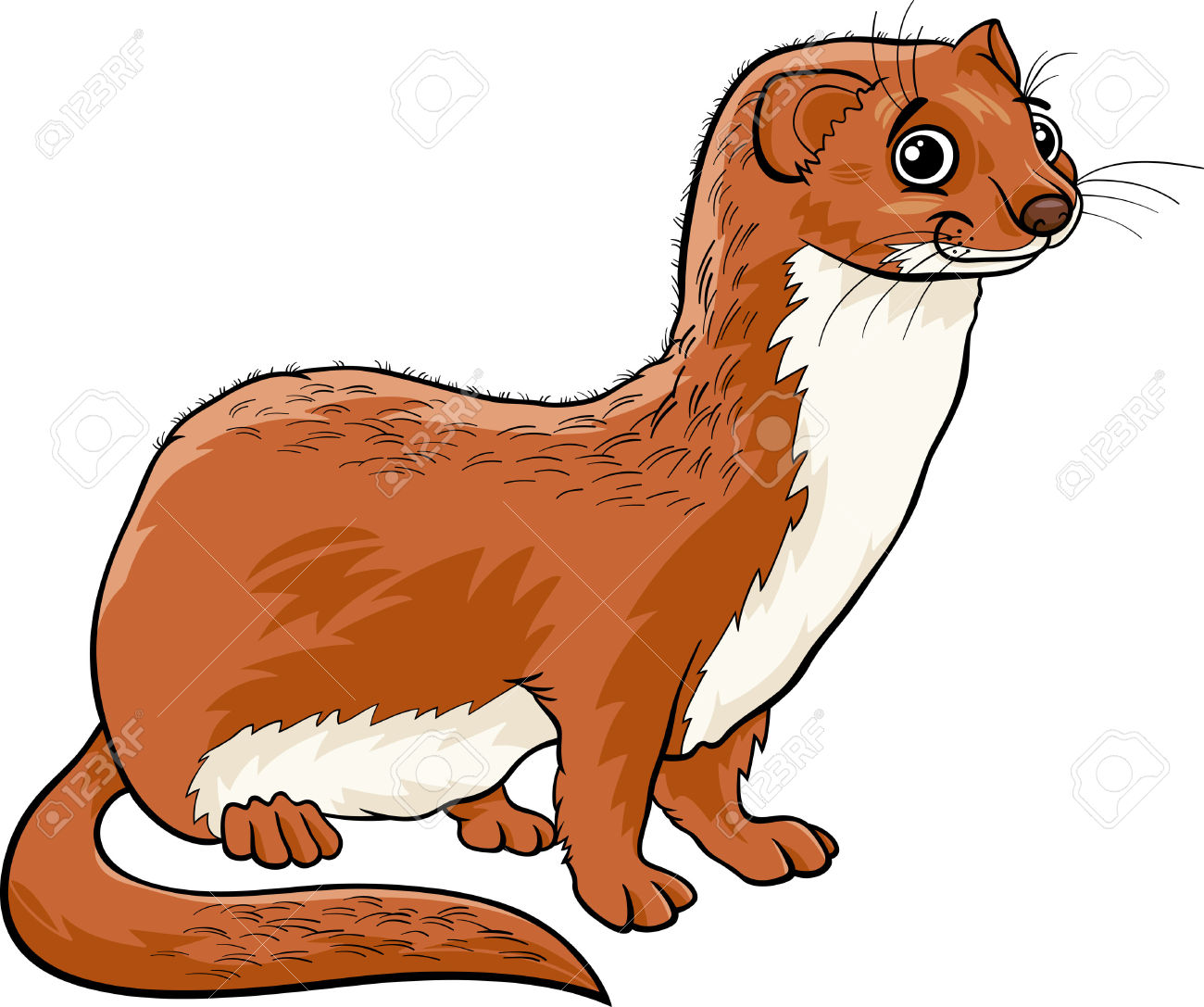 1300x1087 Weasel Clipart Cute Cartoon