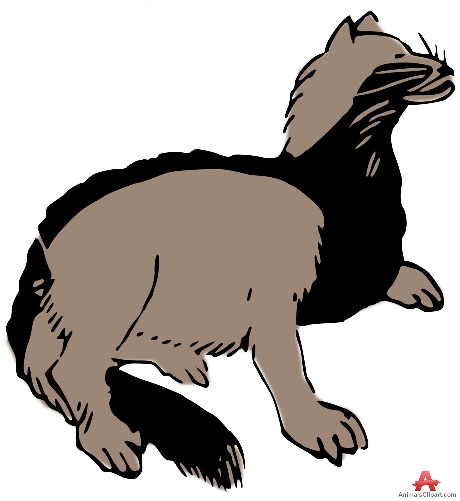 916x999 Animals Clipart Of Badger Clipart With The Keywords Badger