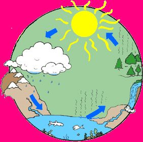 282x280 82 Best Water Cycle Images Weather, Diy And Autism
