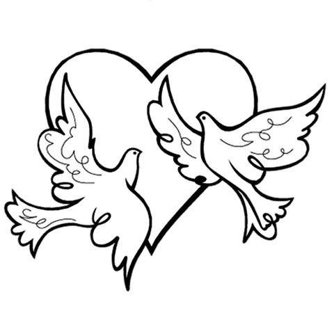 480x480 Dove Clipart Wedding Logo