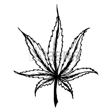 Weed Plant Drawing Free Download Best Weed Plant Drawing On