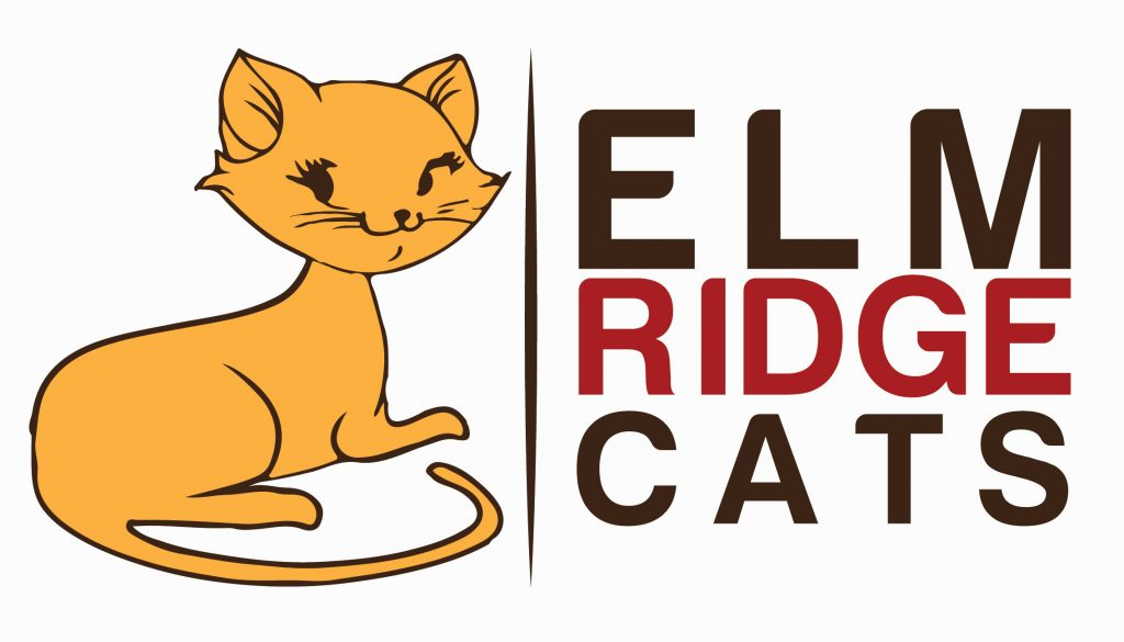 1024x585 What's The Best Wet Cat Food In The Uk Elm Ridge Cats