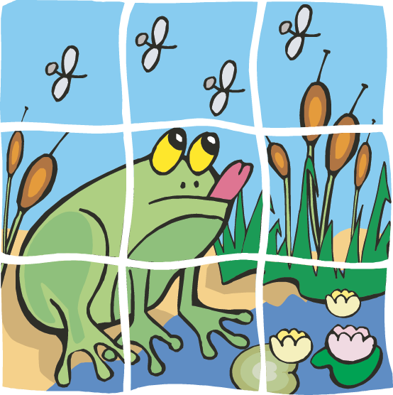 554x556 Wetlands Games (Science Trek Idaho Public Television)
