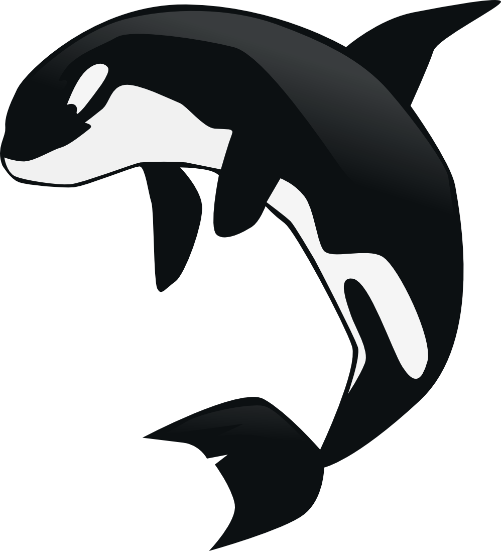 Whale Outline Clipart