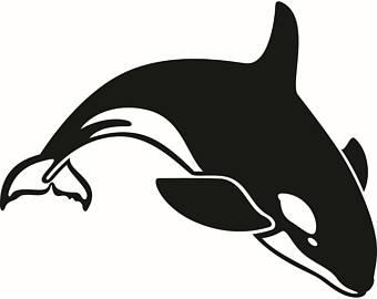 340x270 Killer Whale Clipart Etsy
