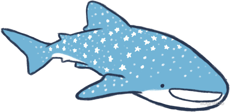 800x393 Starry Whale Sharks (Light Version) Stickers By Soyrwoo Redbubble