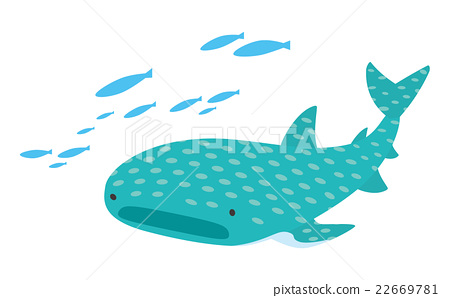 450x298 Whale Shark, Vector, Vectors