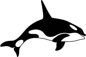 355x234 Orca Clipart Silhouette