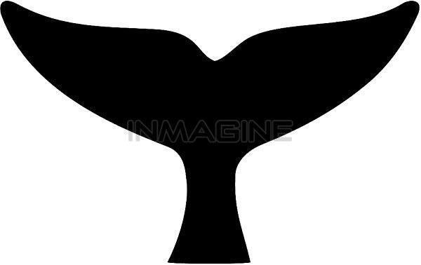 600x378 Whale Tail Clip Art Many Interesting Cliparts