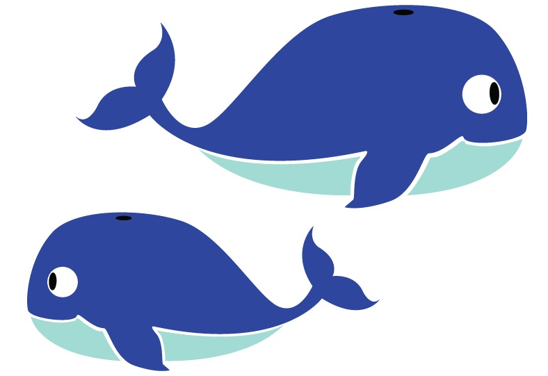 788x541 Whale Clipart Two