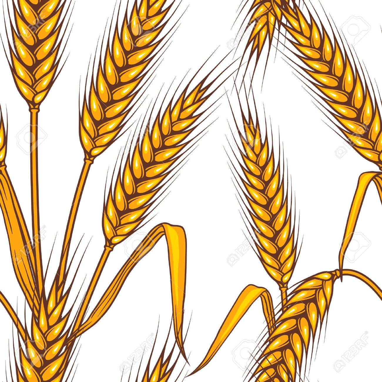 1300x1300 Grain Clipart