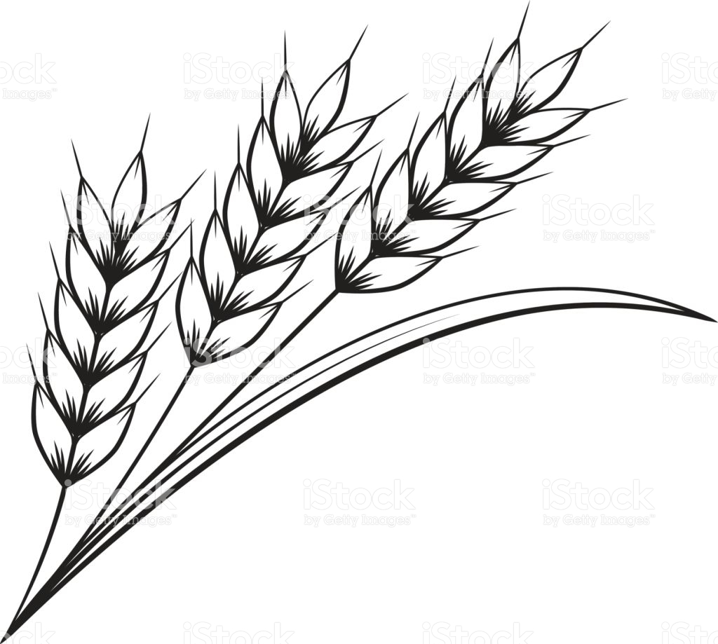 Wheat Clipart   Free download best Wheat Clipart on ...