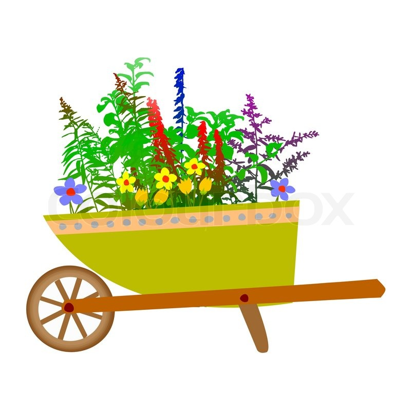 800x800 Wheelbarrow Garden And Flowers