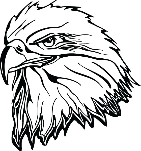 559x600 Eagle Head Clipart Black And White