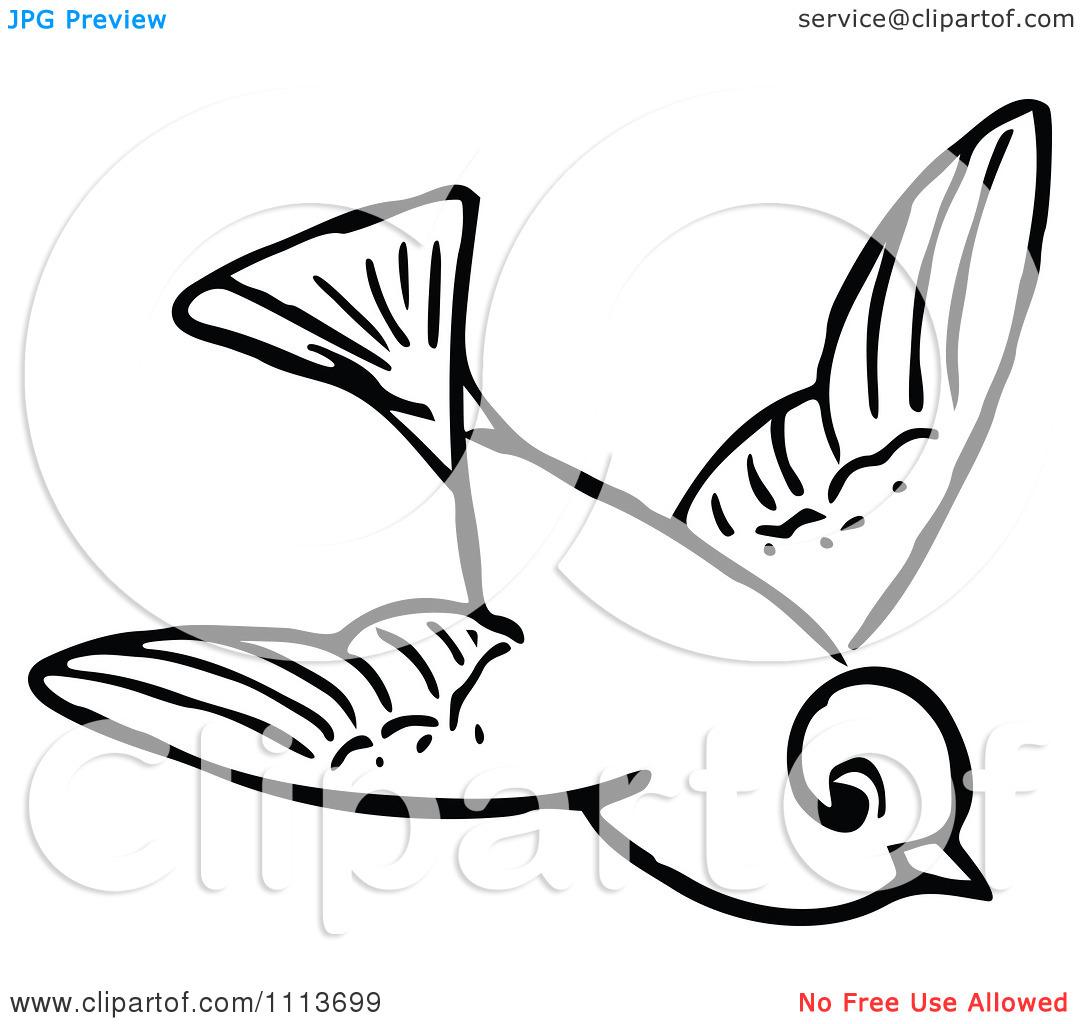 1080x1024 Bird Black And White Clipart