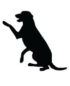 236x288 Dog
