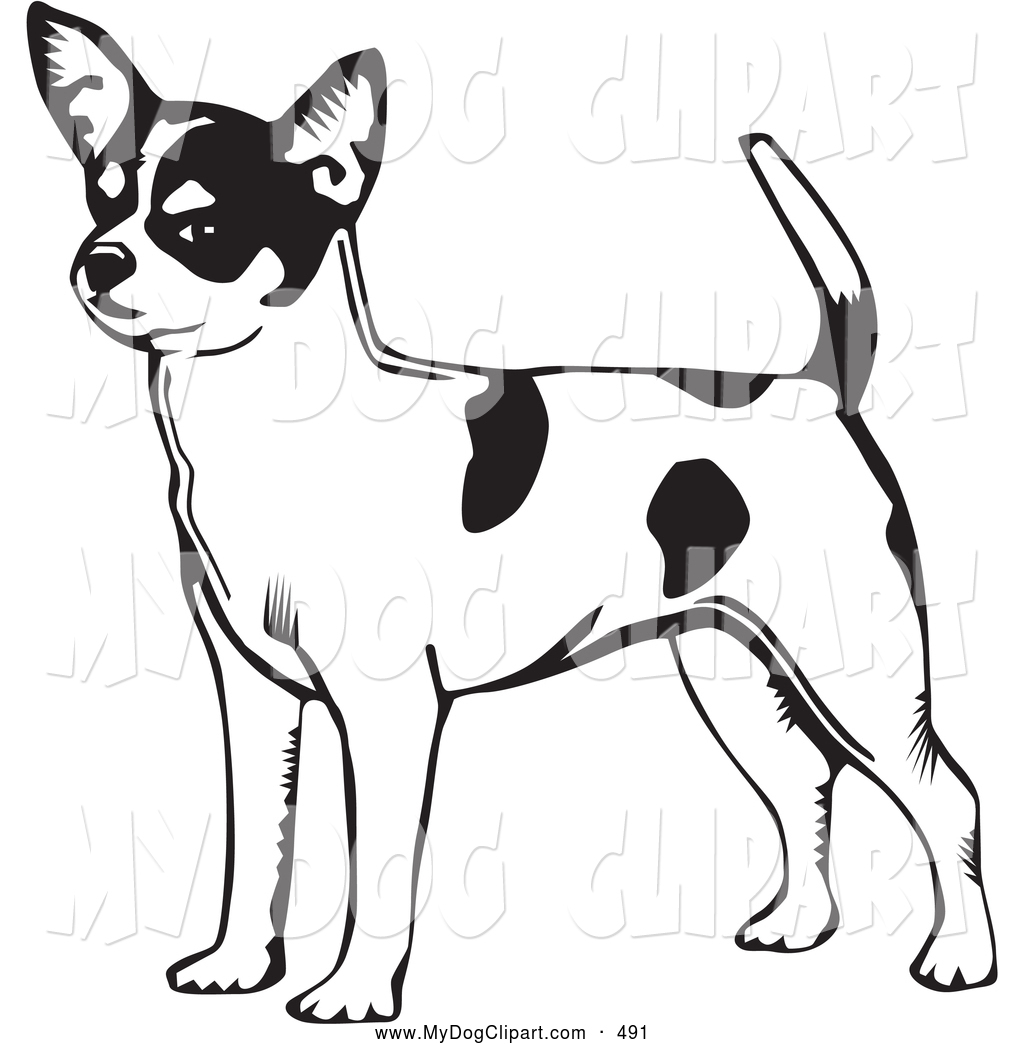 1024x1044 Dog And Cat Clip Art Black And White Clipart Panda