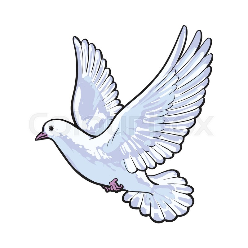 love-dove-drawing