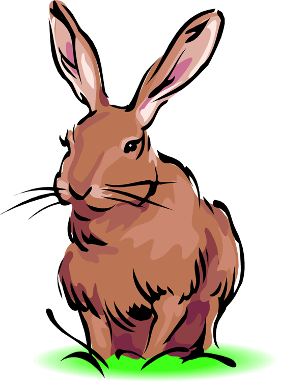 552x750 Bunny White Rabbit Clip Art