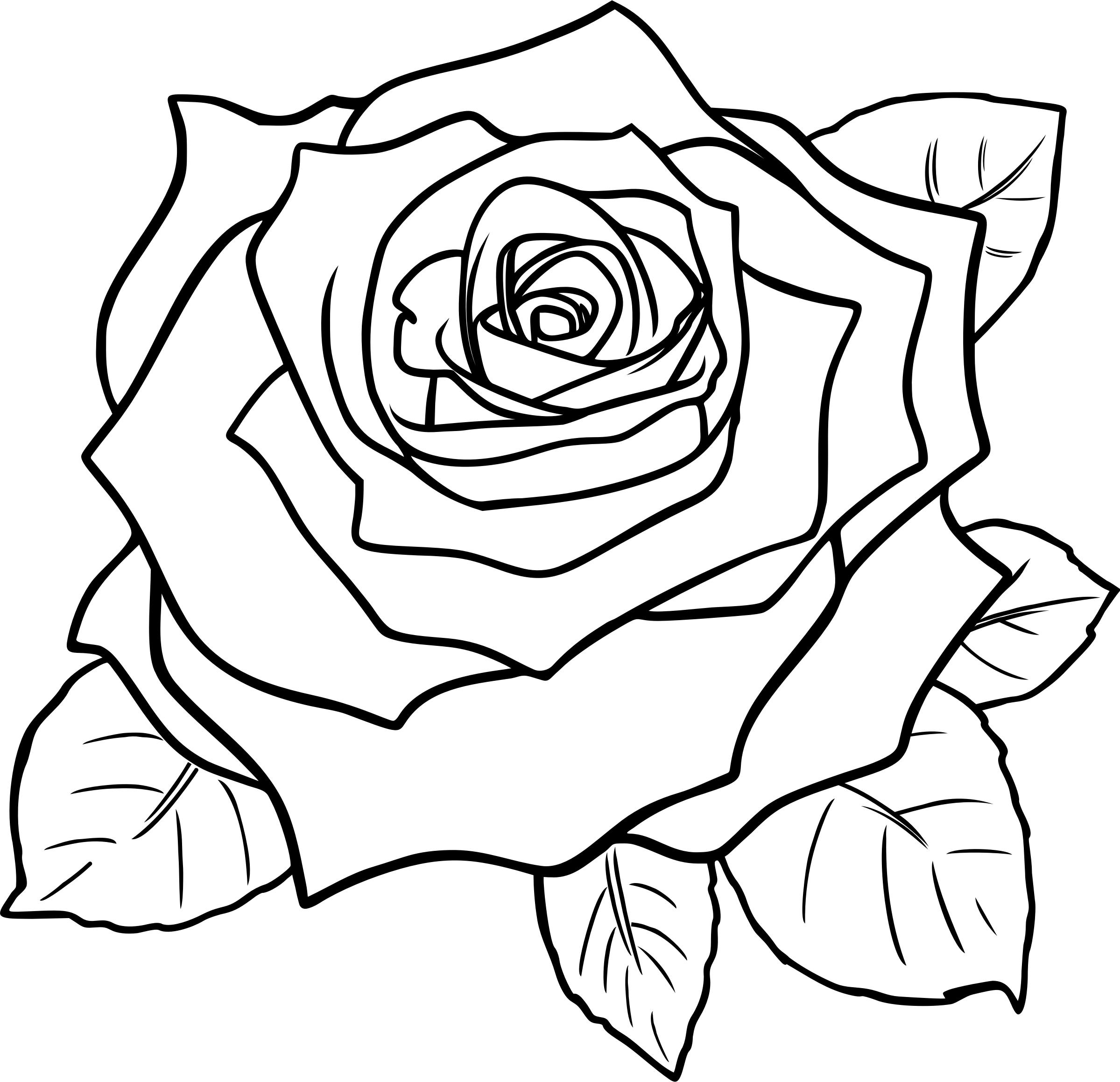 2399x2317 Free Rose Icons Png ROSE Images