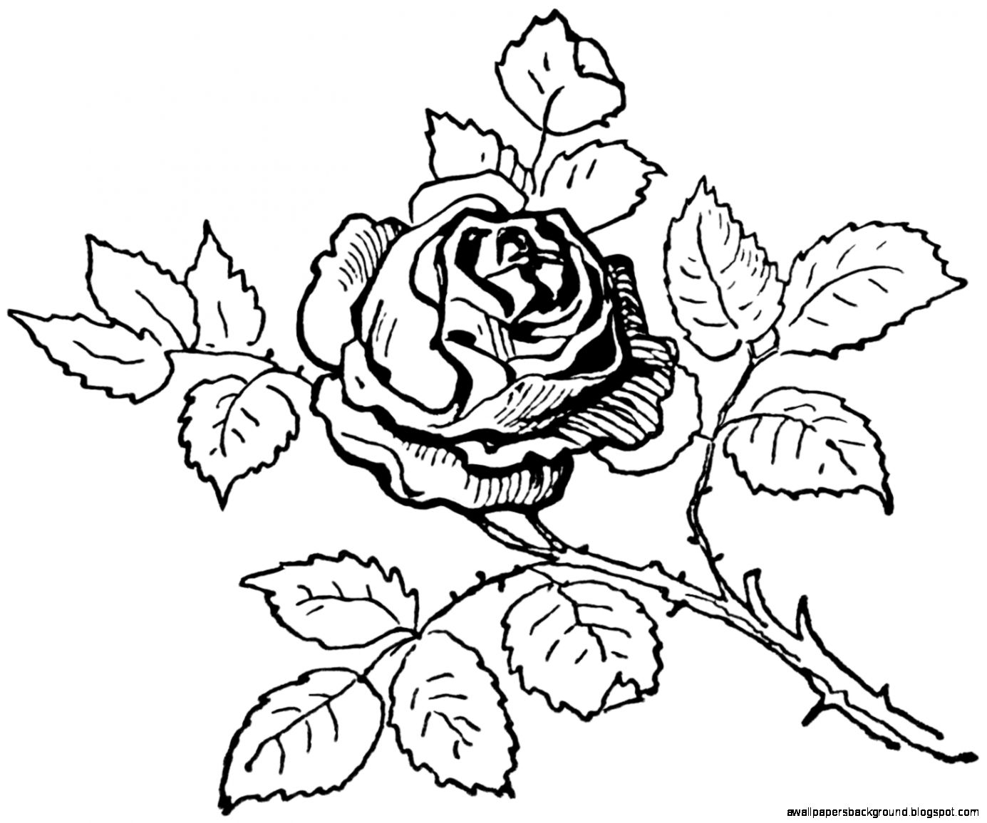1385x1156 Rose Bouquet Clipart Black And White Amp Rose Bouquet Clip Art Black