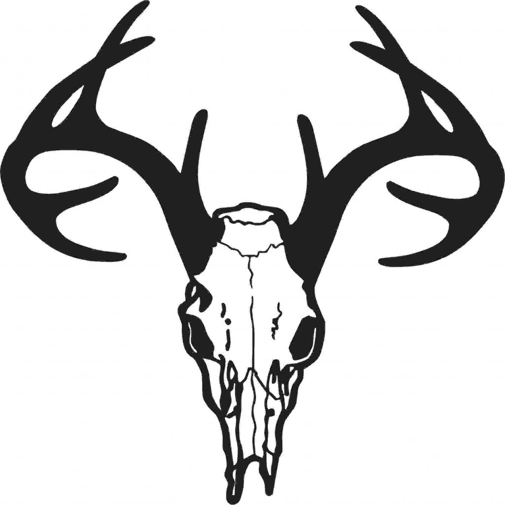 1024x1024 Best 15 Whitetail Deer Clip Art Cbgokgcg Cdr
