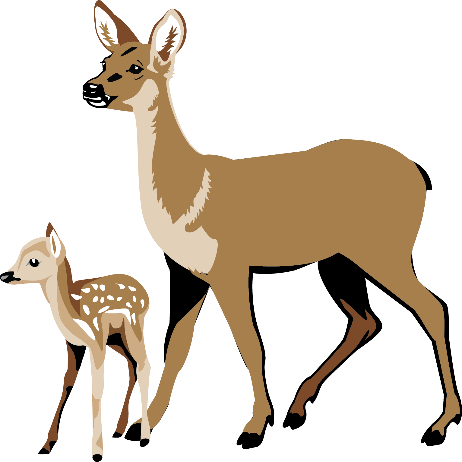 1532x1532 White Tailed Deer Clipart