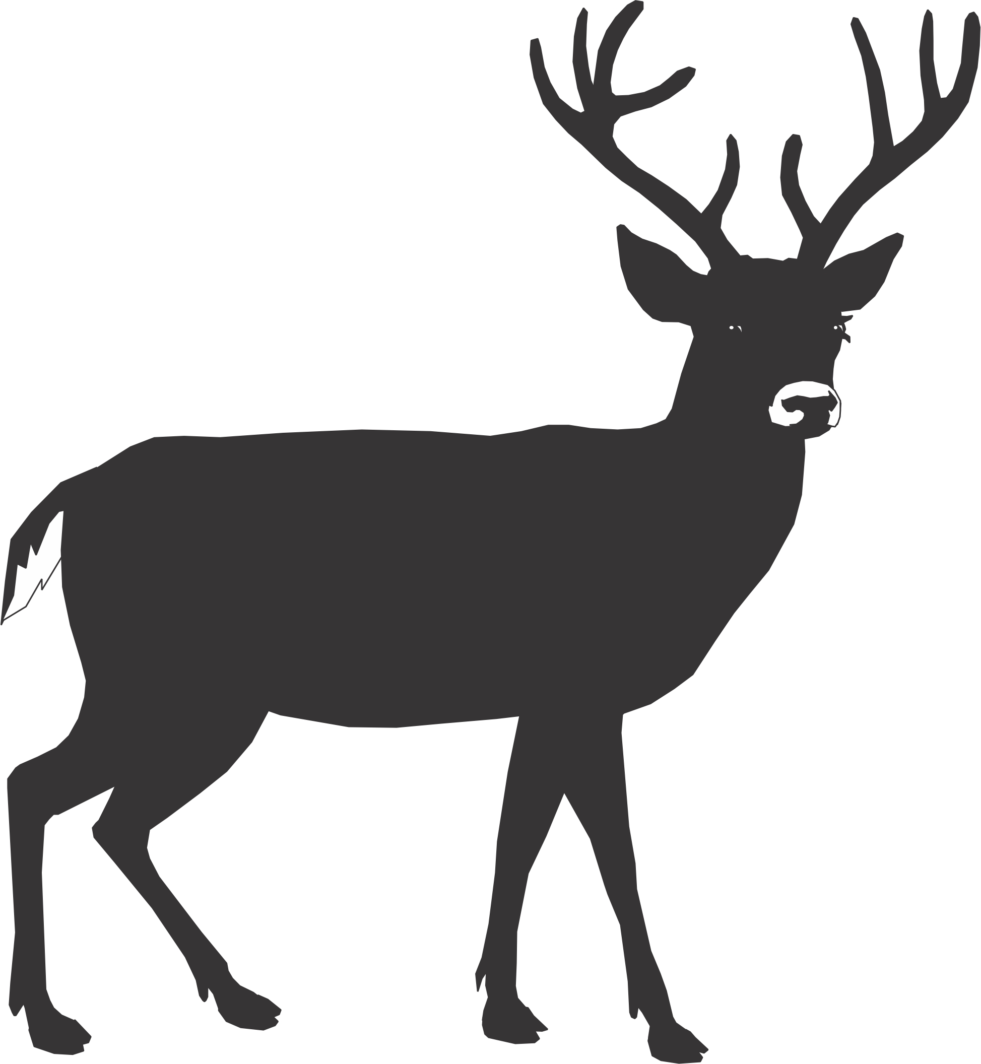 1947x2112 White Tailed Deer Clipart Cartoon
