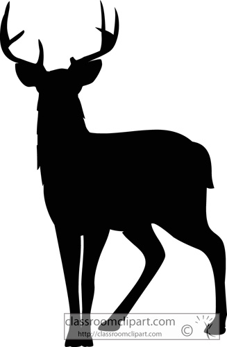327x500 White Tailed Deer Clipart Mule Deer