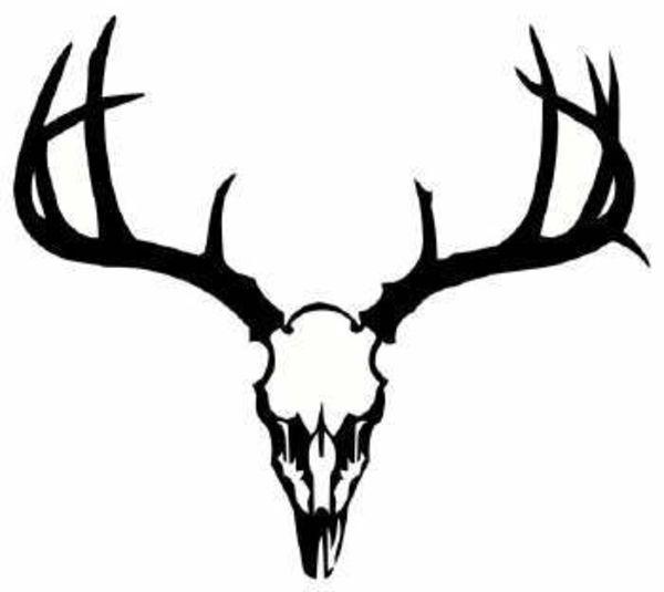 600x535 Deer Antler Clip Art Free