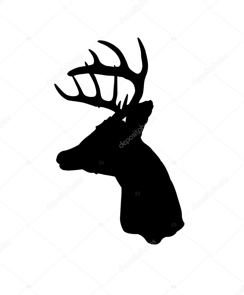 848x1023 Whitetail Deer Silhouette Stock Vector Shabacadesigns