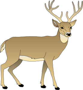 277x300 Clip Art Deer Many Interesting Cliparts