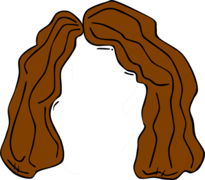 298x261 Brown Wig Clip Art