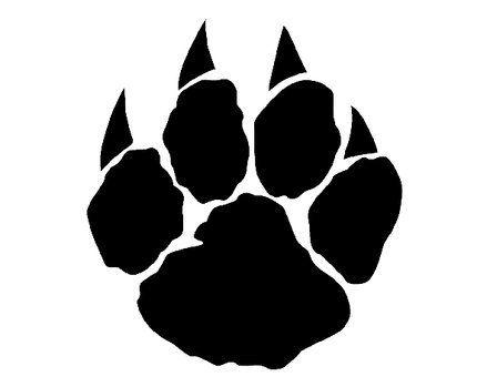 Wild Cat Print