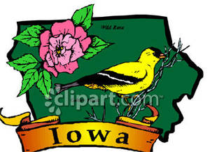 300x217 State Of Iowa With State Symbols The Golden Finch And A Pink Wild