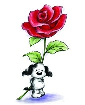 170x210 112 Best Wild Rose Studio Images Puppies, Card