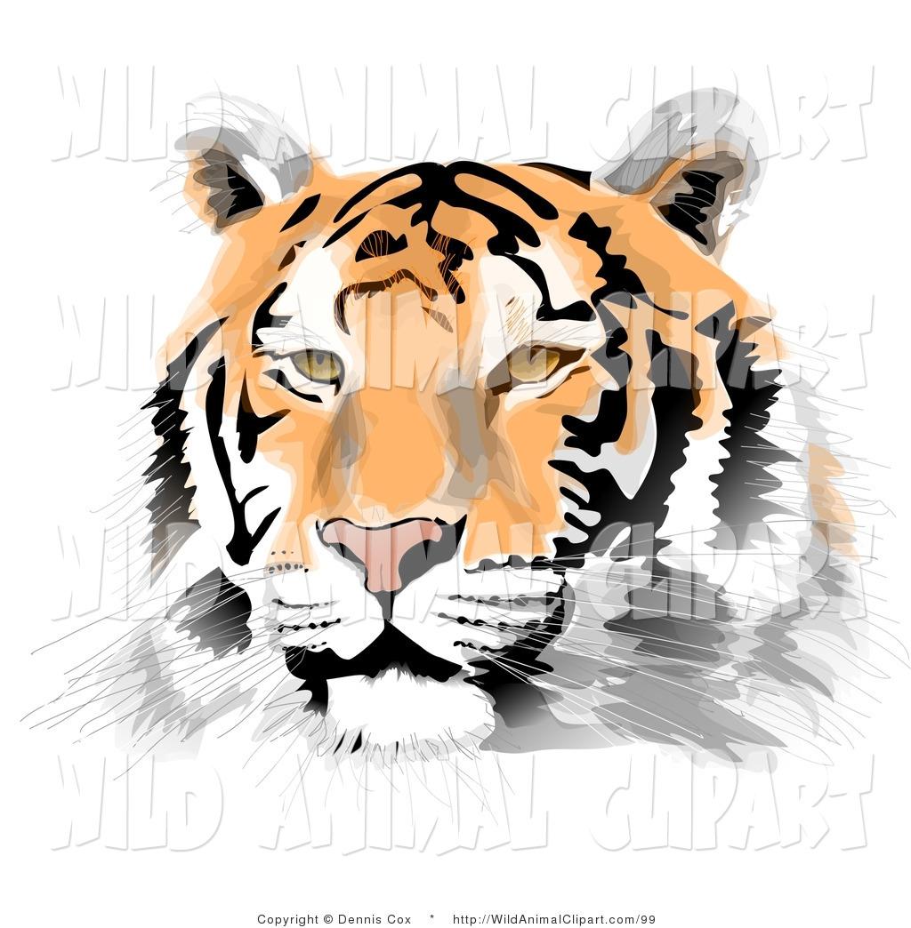 1024x1044 Bengal Clipart Wildcat