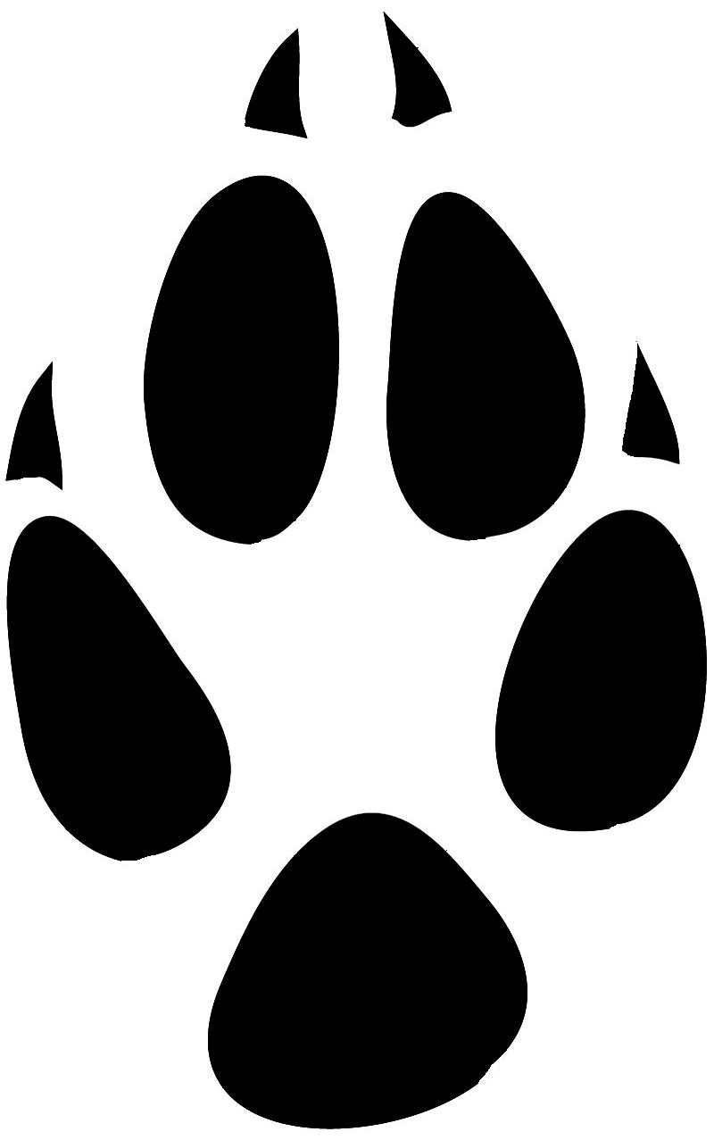800x1277 Fox Paw Print Clip Art