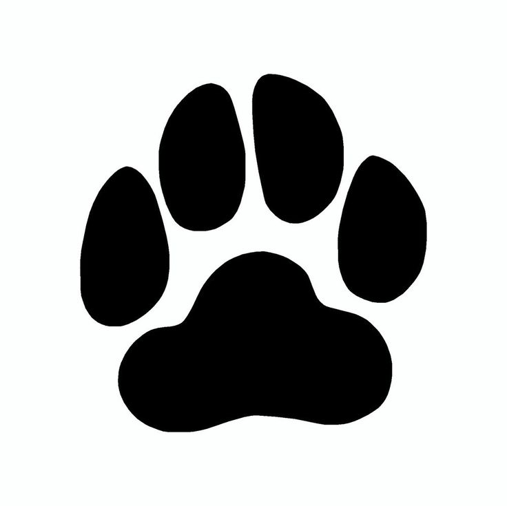 Wildcat Paw Prints Clipart