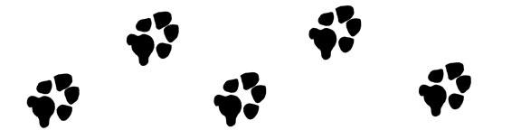 576x144 Paw Prints Wildcat Paw Clipart