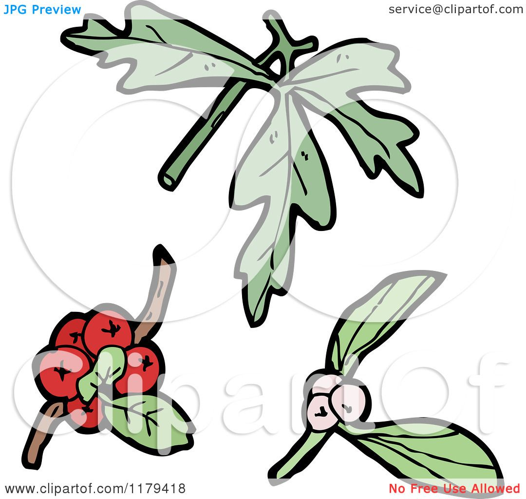 1080x1024 Clip Art of Wildflowers