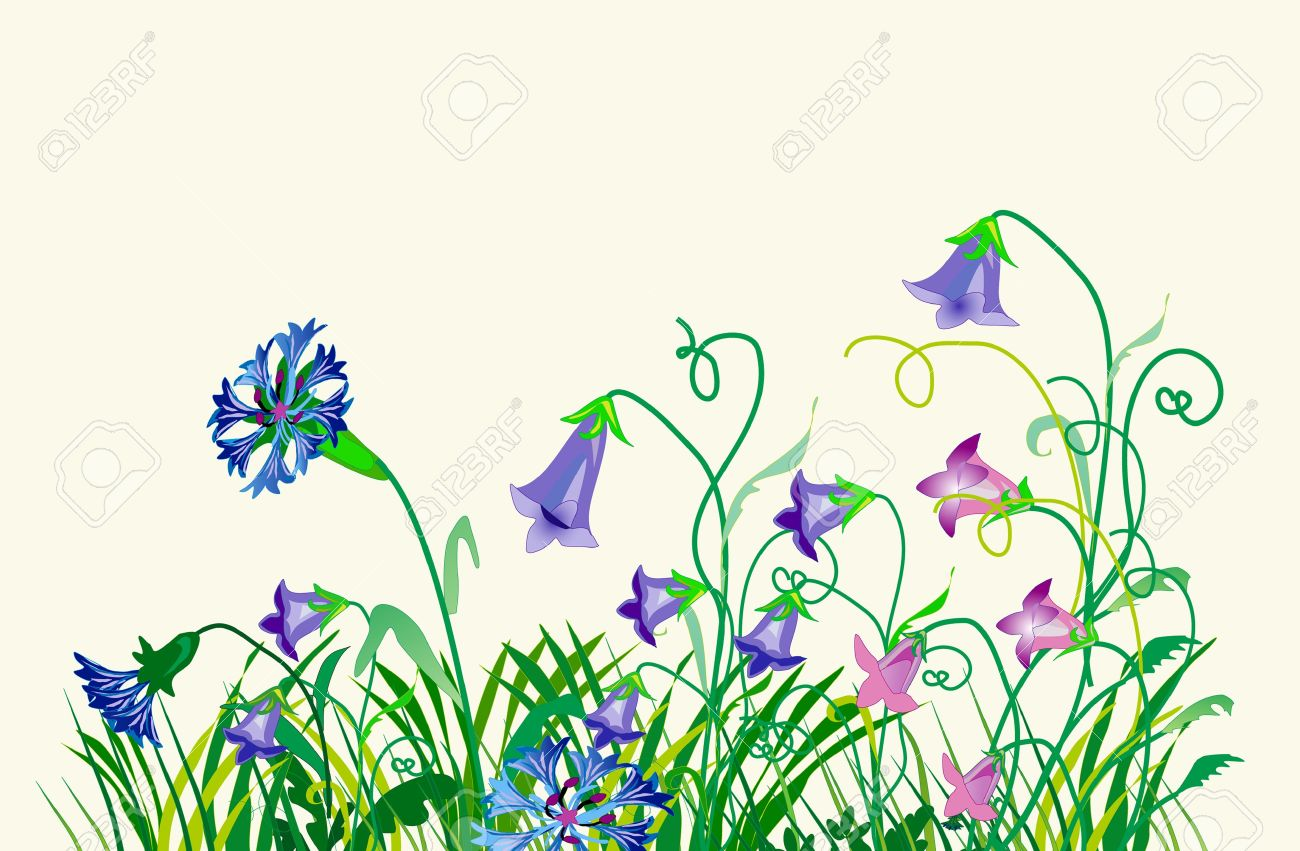 1300x851 Meadow wild plant clipart