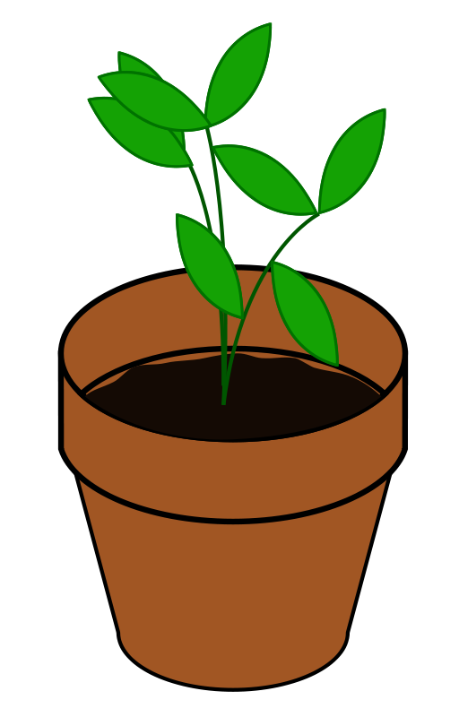 512x800 Growing Plant Clipart Free Images